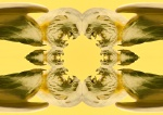 Golden converging griffens