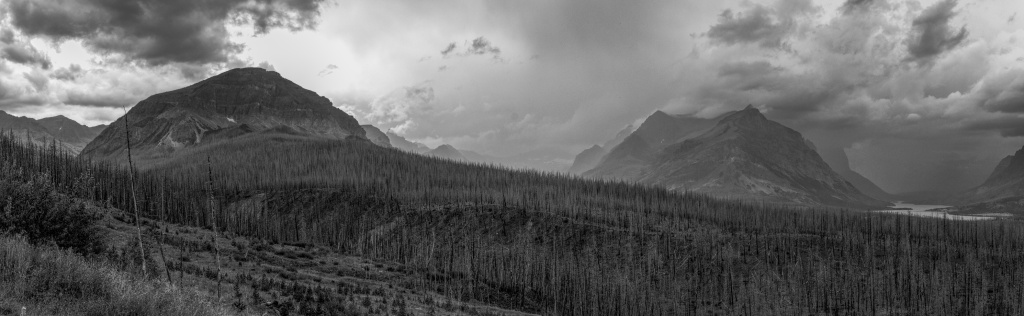 Looking west from just outside the eastern side of Glacier National Park near Saint Mary. The weather was grim and dark, just the way I like it, when I braved the rain to snap the frames that went into this panorama. I built this panorama directly from Nikon NEF files in the Windows version of Affinity Photo. My favorite image processor, Picture Window Pro, is being retired and I am exploring alternatives. I rather like this result.