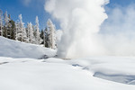 Grand Geyser Yellowstone
